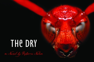 The Dry POSTER (2)